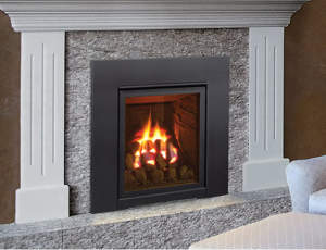 Enviro Q1 Gas Fireplace Insert