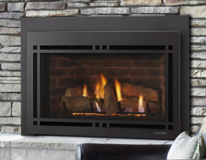 Ruby Series Direct Vent Gas Insert